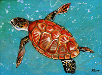 Contemporary abstract painting of  bruckner turtle