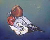 Contemporary abstract painting of  widgeon duck